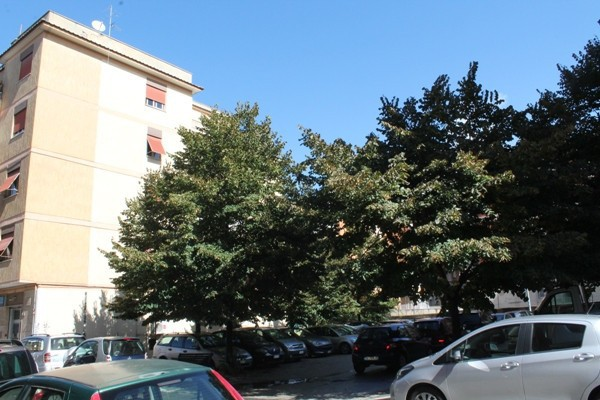 Bilocale Pomezia Piazza Federico Ii 9