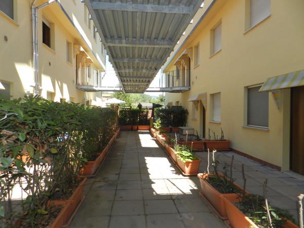 Bilocale Lucca Via Sarzanese 6