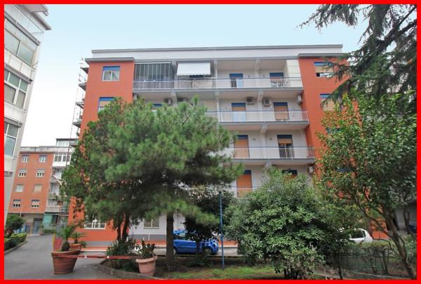 Appartamento in affitto a Gravina di Catania, 3 locali, prezzo € 520 | CambioCasa.it