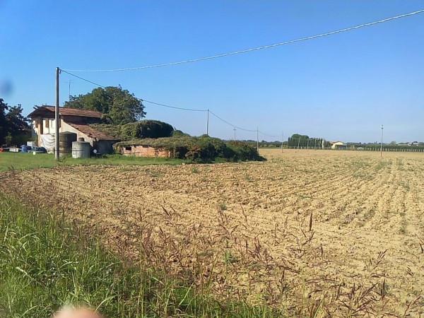 Terreno Agricolo in vendita a Solarolo, 9999 locali, prezzo € 200.000 | Cambio Casa.it
