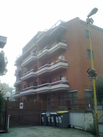 Appartamento in Affitto a Ciampino