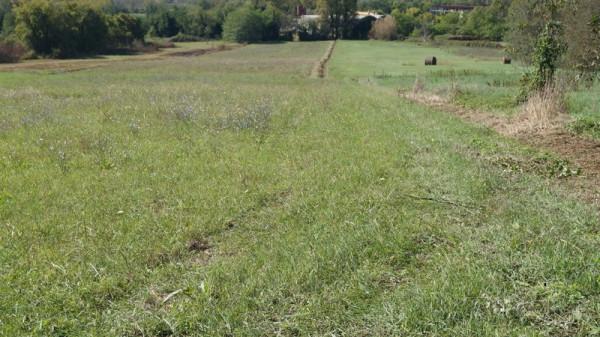 Terreno Agricolo in vendita a Caiazzo, 9999 locali, prezzo € 220.000 | Cambio Casa.it