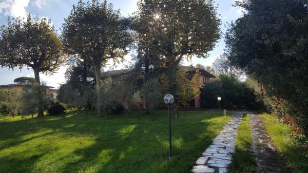 Villa in Vendita a Pietrasanta Semicentro: 5 locali, 400 mq