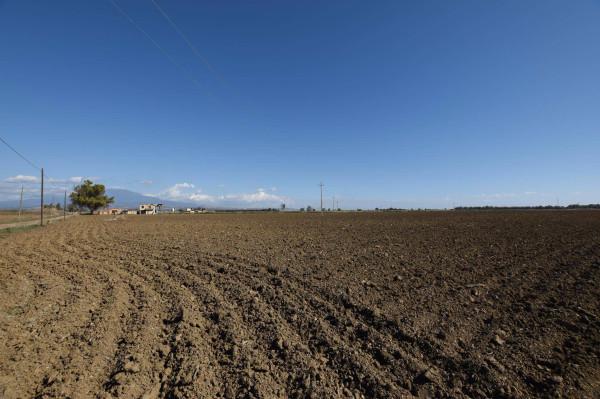 Terreno commerciale in Vendita a Catania Periferia: 220000 mq