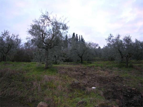 Terreno Agricolo in Vendita a San Casciano in Val di Pesa
