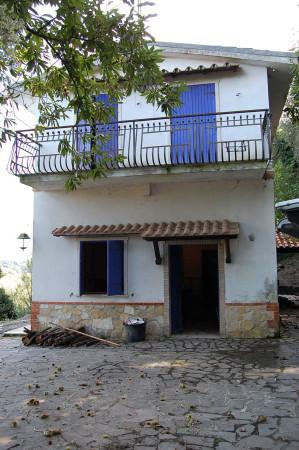 Villa-Villetta Vendita Tolfa