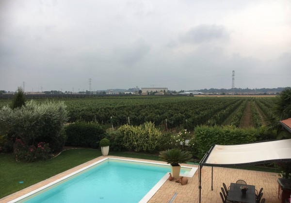 Appartamento in affitto a Valeggio sul Mincio, 3 locali, prezzo € 550 | Cambio Casa.it