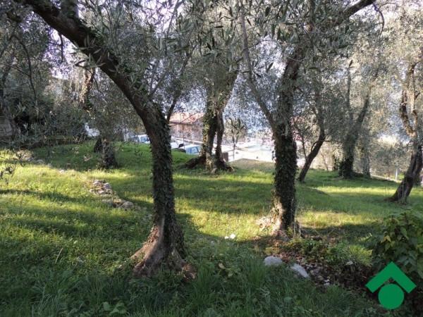 Terreno Agricolo in vendita a Brenzone, 9999 locali, prezzo € 78.000 | Cambio Casa.it