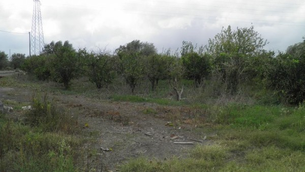 Terreno Agricolo in vendita a Paternò, 9999 locali, prezzo € 39.000 | Cambio Casa.it