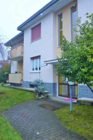Appartamento in affitto a Cardano al Campo, 2 locali, prezzo € 380 | Cambio Casa.it