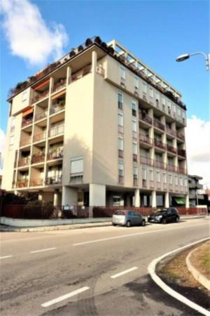 Appartamento in affitto a Gallarate, 3 locali, prezzo € 450 | Cambio Casa.it