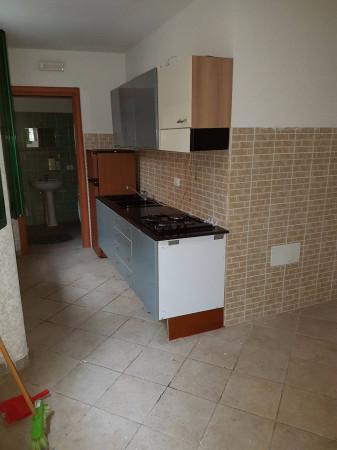 Appartamento in affitto a Castel San Giorgio, 1 locali, prezzo € 200 | Cambio Casa.it
