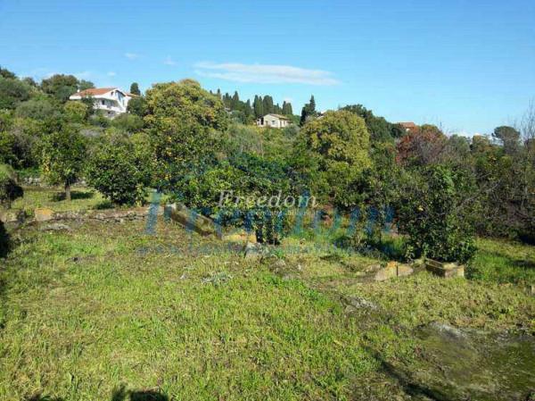 Terreno commerciale in Vendita a Valverde Centro: 5400 mq