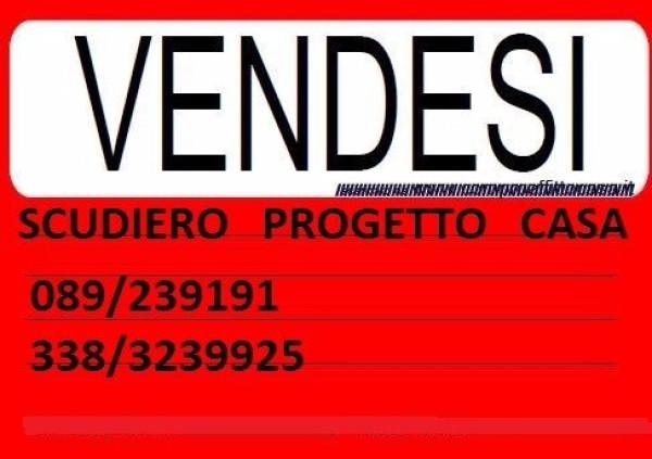 VENDESI TERRENO INDUSTRIALE A FISCIANO (SA) Rif.8745440