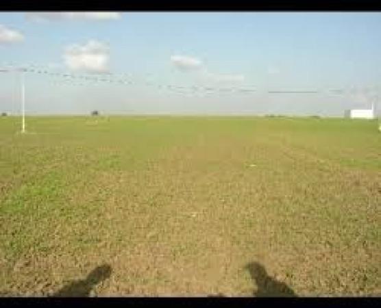 Terreno Agricolo in vendita a Foggia, 9999 locali, prezzo € 250.000 | Cambio Casa.it