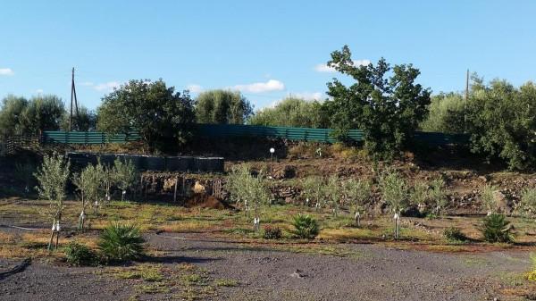 Terreno Agricolo in vendita a Belpasso, 9999 locali, prezzo € 59.000 | CambioCasa.it