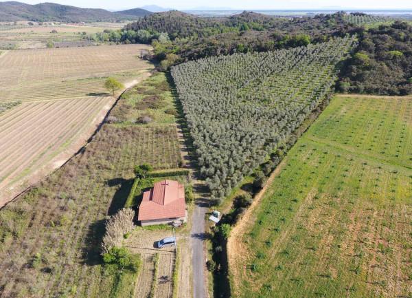 Attività / Licenza in vendita a Castiglione della Pescaia, 2 locali, prezzo € 550.000 | CambioCasa.it
