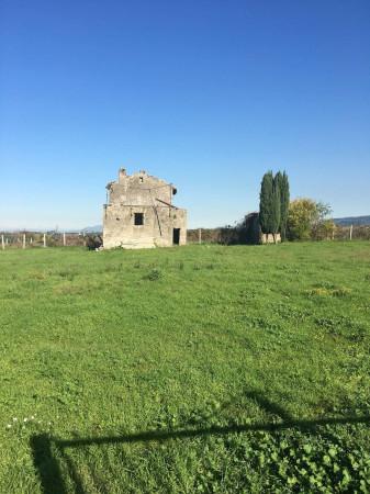Terreno Agricolo in Vendita a Marino