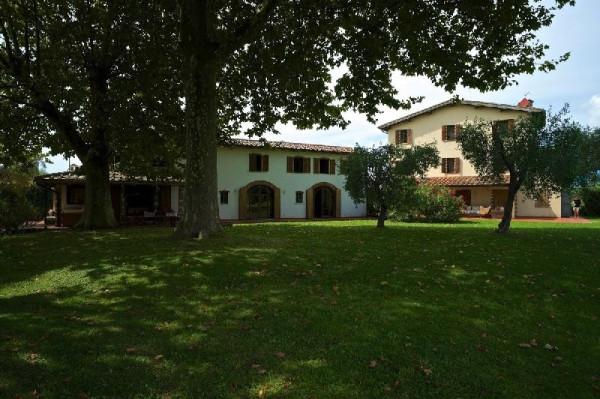 Villa in Vendita a Pietrasanta Periferia: 5 locali, 550 mq