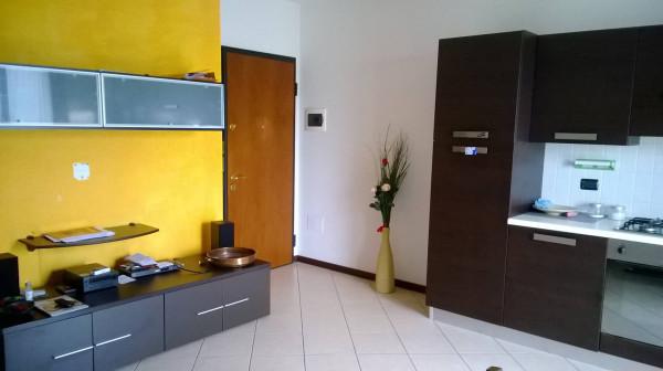 Appartamento in Affitto a Correggio Semicentro: 1 locali, 50 mq