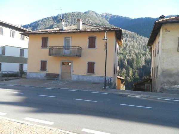 Villa in Vendita a Breguzzo Periferia: 5 locali, 463 mq