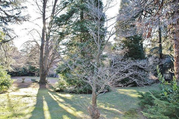Terreno Edificabile Residenziale in vendita a Luvinate, 9999 locali, prezzo € 184.000 | CambioCasa.it