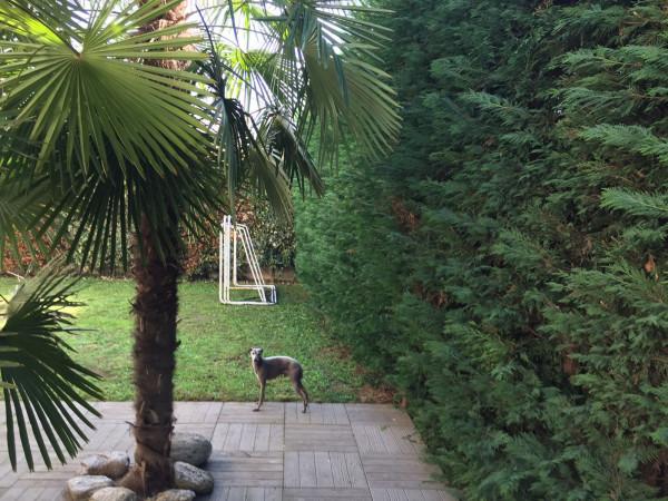 Villa in vendita a Cornaredo, 6 locali, prezzo € 490.000   Cambio Casa.it
