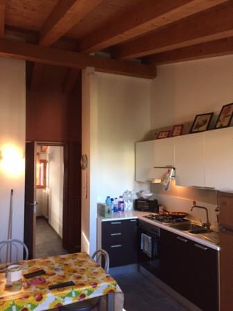 Appartamento, Centro città, Affitto - Rovigo (Rovigo)