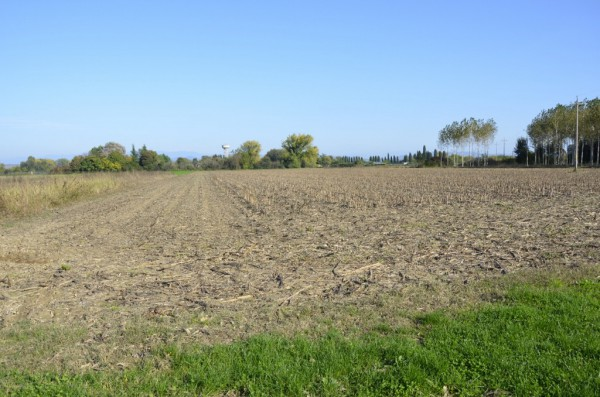 SAN CANZIAN D'ISONZO: TERRENO AGRICOLO Rif.9251401
