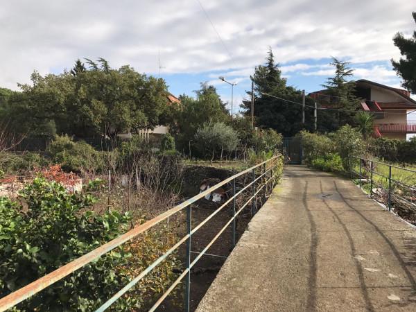 Terreno residenziale in Vendita a Mascalucia Centro: 2600 mq