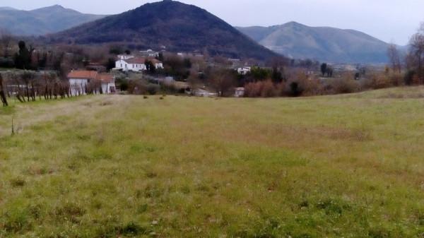 Terreno Agricolo in vendita a Piana di Monte Verna, 9999 locali, prezzo € 75.000 | CambioCasa.it
