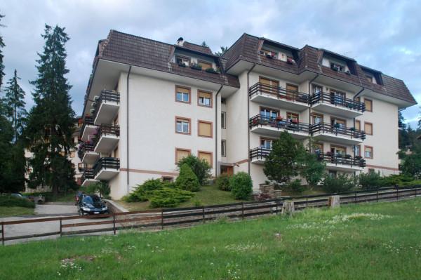Appartamento in Vendita a Ronzone Periferia: 1 locali, 40 mq