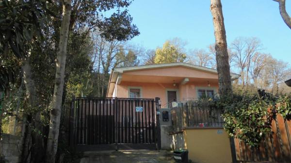 Villa in Affitto a Fiumicino