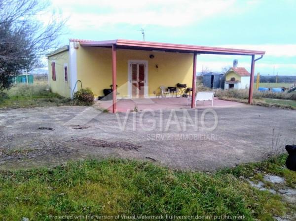 Appartamento in Vendita a Foggia Periferia: 2 locali, 60 mq