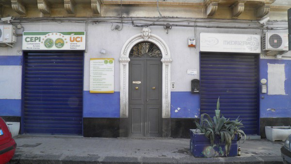 Negozio / Locale in affitto a Paternò, 2 locali, prezzo € 500 | CambioCasa.it