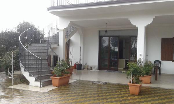 Negozio-locale in Affitto a Ginosa Semicentro: 5 locali, 1267 mq
