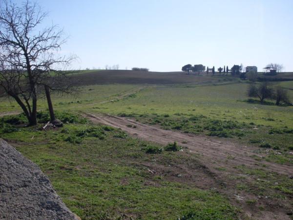 Terreno Commerciale in Vendita a Tuscania Rif.9626969