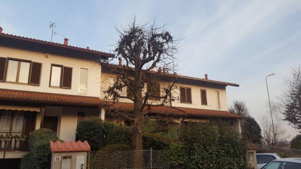 Villa a Schiera in Vendita a Lomazzo