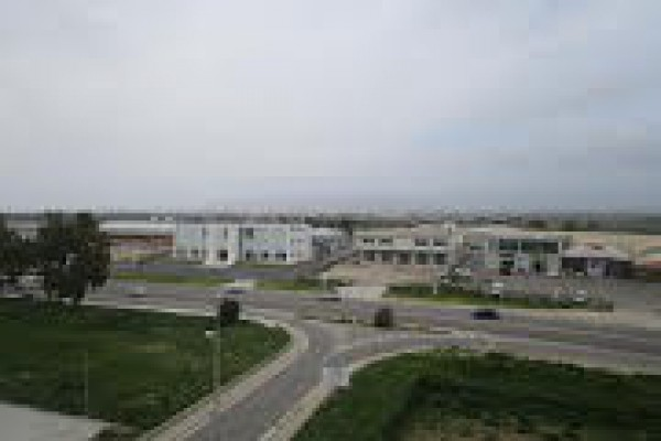 Appartamento in Affitto a Cagliari: 3 locali, 75 mq