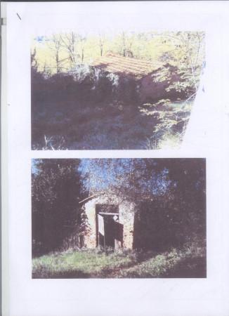 Rustico in Vendita a San Miniato Semicentro: 5 locali, 300 mq