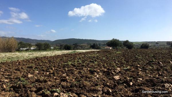 Terreno Agricolo in vendita a Soleminis, 9999 locali, prezzo € 13.000   Cambio Casa.it