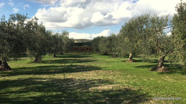 Terreno Agricolo in vendita a Villaputzu, 9999 locali, prezzo € 110.000 | Cambio Casa.it