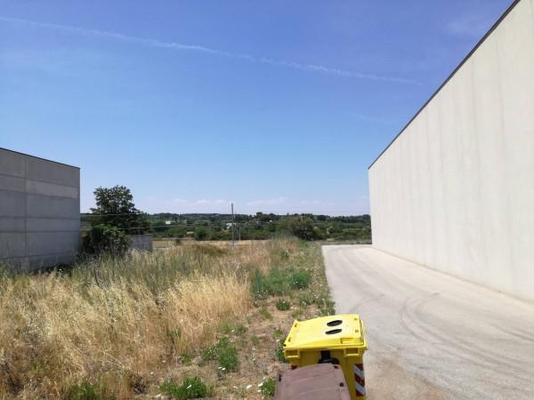 Terreno Commerciale in Vendita a Putignano Rif.9952852