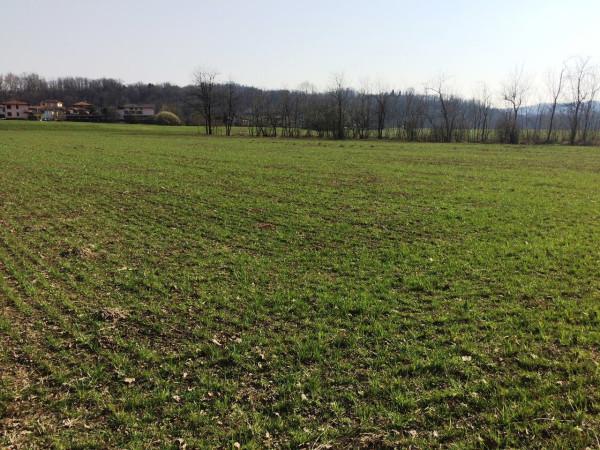 Terreno Agricolo in vendita a Senna Comasco, 9999 locali, prezzo € 135.000 | Cambio Casa.it