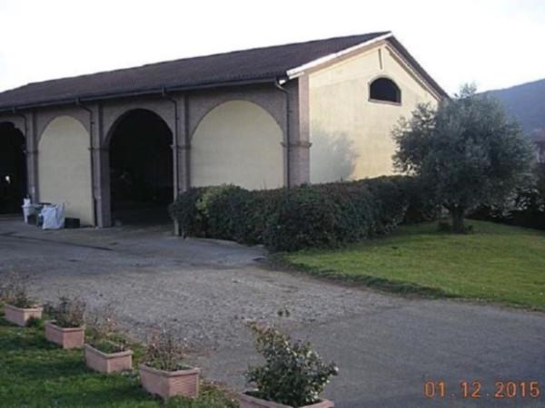 Terreno Agricolo in vendita a Trana, 9999 locali, prezzo € 80.000 | Cambio Casa.it