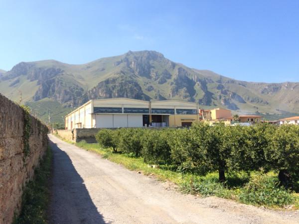 Capannone in Affitto a Palermo Periferia: 5 locali, 2500 mq