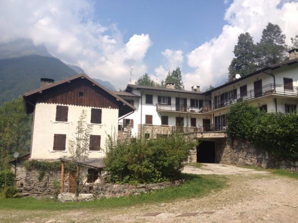 Appartamento in Affitto a Gandellino Periferia: 3 locali, 65 mq
