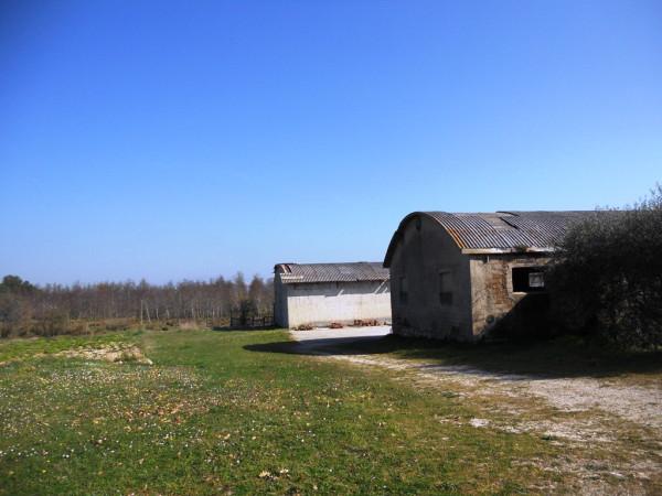 Capannone in vendita a Castel Ritaldi, 1 locali, prezzo € 45.000 | Cambio Casa.it