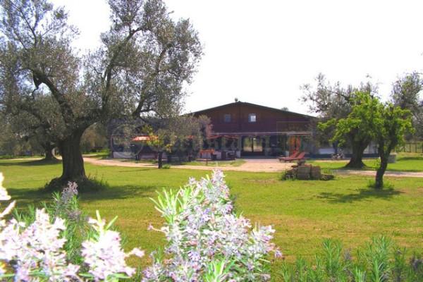 Attività / Licenza in vendita a Canino, 6 locali, Trattative riservate | Cambio Casa.it