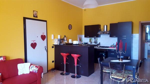Appartamento in Affitto a Cortemaggiore Centro: 2 locali, 55 mq